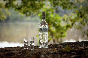 Vodka Price in India 18