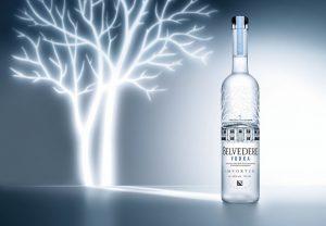 Vodka Price in India 9