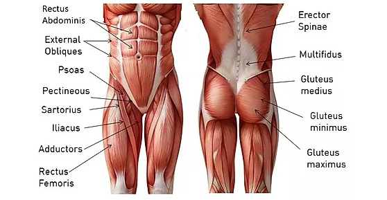 Core Exercises For Men At Home